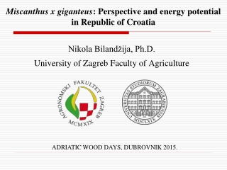 Miscanthus x giganteus : Perspective and energy potential in Republic of Croatia
