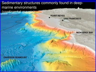 Sedimentary structures commonly found in deep-marine environments (continental margin)