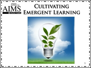 Cultivating Emergent Learning