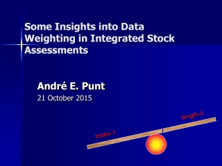 Some Insights into Data Weighting in Integrated Stock  Assessments