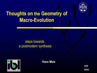 Thoughts on  the  Geometry of Macro-Evolution