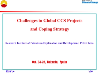 Challenges in Global CCS Projects  and Coping Strategy