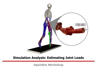 Simulation Analysis: Estimating Joint Loads