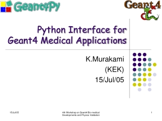 Python Interface for Geant4 Medical Applications