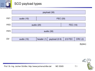 SCO payload types