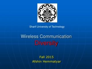 Wireless Communication Diversity