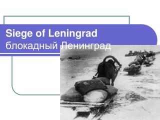 Siege of Leningrad блокадный Ленинград