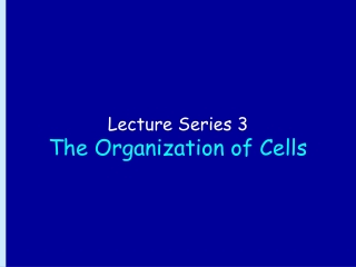 Lecture Series 3 The Organization of Cells