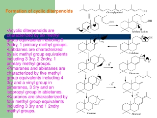 Formation of cyclic diterpenoids