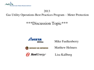 2013  Gas Utility Operations Best Practices Program – Meter Protection