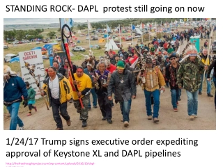 thefreethoughtproject/wp-content/uploads/2016/10/dapl-protesters.jpg