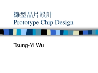 雛型晶片設計 Prototype Chip Design