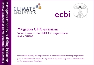 Mitigation GHG emissions What is new in the UNFCCC negotiations? Sandra FREITAS
