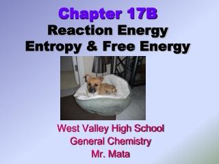 Chapter 17B Reaction Energy Entropy & Free Energy