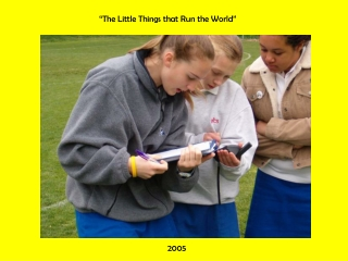 """The Little Things that Run the World"""