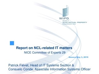 Report on NCL-related IT matters 	NICE Committee of Experts 29