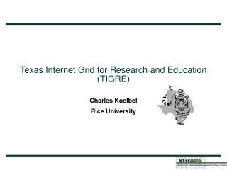 Texas Internet Grid for Research and Education (TIGRE)