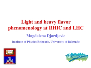 Light and heavy flavor phenomenology at RHIC and LHC Magdalena Djordjevic