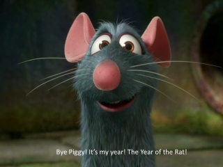 Bye Piggy! It's my year! The Year of the Rat!