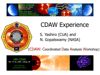 CDAW Experience
