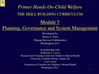THE SKILL BUILDING CURRICULUM Module 5 Planning, Governance and System Management