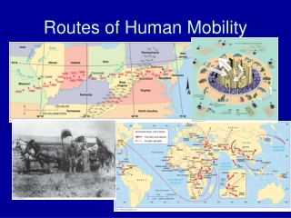 Routes of Human Mobility