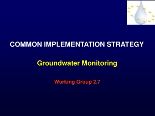 COMMON IMPLEMENTATION STRATEGY