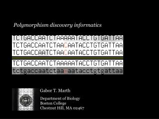 Polymorphism discovery informatics