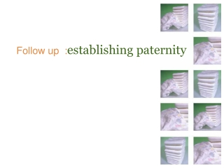 Follow up  : establishing paternity