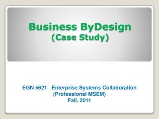 Business  ByDesign (Case Study)