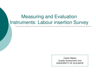 Measuring and Evaluation Instruments: Labour insertion Survey