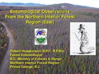 Robert Hodgkinson, R.P.F., R.P.Bio. Forest Entomologist B.C. Ministry of Forests & Range