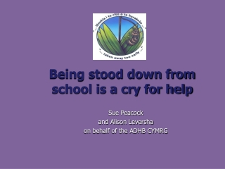 Being stood down from  school is a cry for help