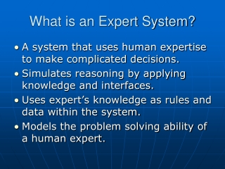 What is an Expert System?