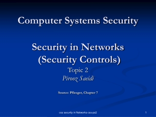 Computer Systems Security Security in Networks  (Security Controls)