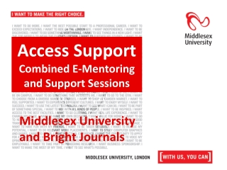 Access Support  Combined E-Mentoring and Support Sessions