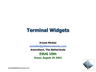 Terminal Widgets