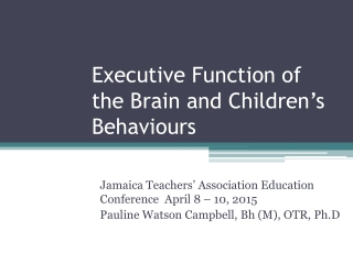 Executive Function of the Brain and Children's Behaviours