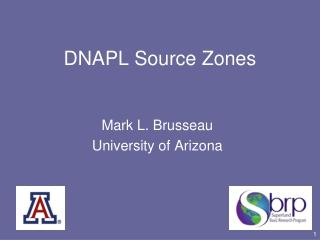 DNAPL Source Zones