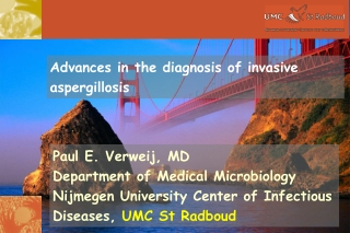 Paul E. Verweij, MD Department of Medical Microbiology