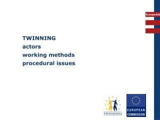 TWINNING actors working methods  procedural issues