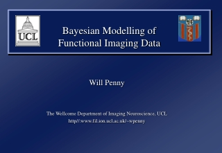 Bayesian Modelling of  Functional Imaging Data