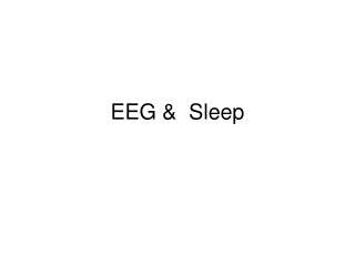 EEG &  Sleep