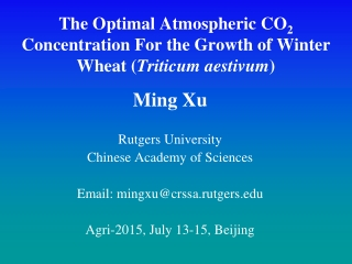 The Optimal Atmospheric CO 2  Concentration For the Growth of Winter Wheat ( Triticum aestivum )
