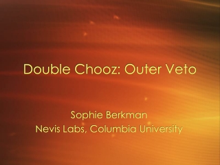 Double Chooz: Outer Veto