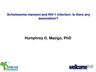 Schistosoma mansoni  and HIV-1 infection: Is there any association?