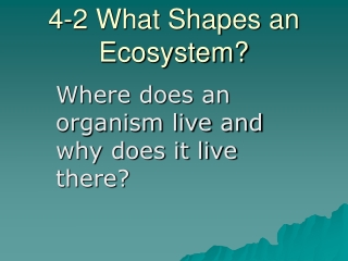 4-2 What Shapes an Ecosystem?