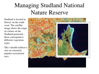 Managing Studland National Nature Reserve