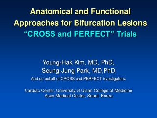 "Anatomical and Functional Approaches for Bifurcation Lesions ""CROSS and PERFECT"" Trials"