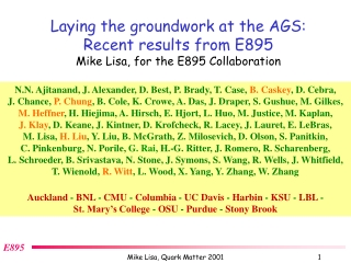 Laying the groundwork at the AGS: Recent results from E895 Mike Lisa, for the E895 Collaboration